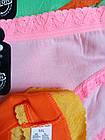 Трусы плавки женские коттон стрейч р.42,44.От 6шт по 18грн., фото 4