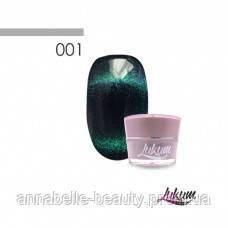 Гель-лак Lukum Nails 24D «Северное сияние» №01 5мл
