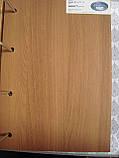 Межкомнатная дверь Глория Экошпон со стеклом сатин, цвет ольха 3D, фото 2