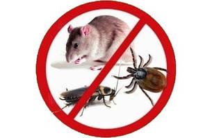 Защита от насекомых и грызунов