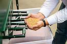 ✔ Аэродинамический сепаратор ИСМ-40 ➥ очистка и калибровка зерна, фото 6