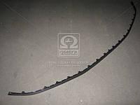 Спойлер бампера переднего  ШКОДА ФАБИЯ 07-10 (пр-во TEMPEST) (арт. 450512225)
