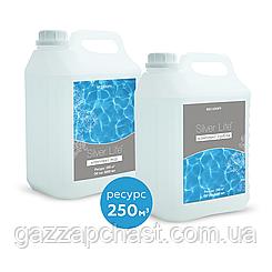 Средство для дезинфекции воды в бассейне и удаления водорослей Silver Life, 2*5 л  СВ40