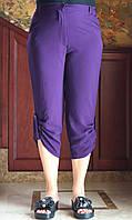 Бриджи женские арт. 104 размер 50-62 темно-фиолетовые/ фиолетового цвета/ баклажан