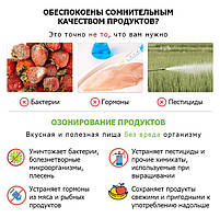 Недорогой озонатор 400 мг/час для дезинфекции воздуха, воды, поверхностей OZOTOP-101, фото 3