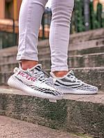Кроссовки Adidas Yeezy Boost 350 Zebra  (ААА+)