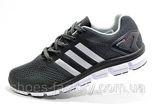 Літні кросівки в стилі Adidas Climachill 2019, Gray (Climacool)