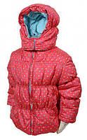Дутая демисезонная куртка Pidilidi 98 (972-03)