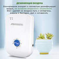 Бюджетный озонатор OZOTOP-101 - дезинфекция воздуха, воды, поверхностей, фото 8