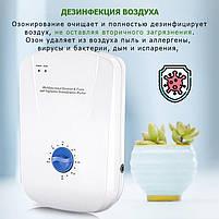 Бюджетний озонатор для дезінфекції в будинку/офісі Ozotop-101. Стерилізатор повітря, води, поверхонь, фото 10