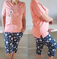 Домашняя пижама с бриджами женская Nicoletta (Николетта) комплект хлопковый трикотажный Турция