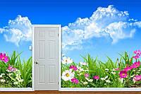 """Фото Обои """"Полевые цветы и голубое небо"""""""