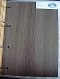 Дверь Леона Новый стиль экошпон с матовым стеклом, цвет кедр, фото 2