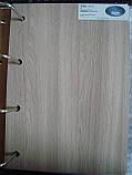 Дверь Леона Новый стиль экошпон с матовым стеклом, цвет сандал, фото 2