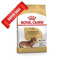 Сухой корм для собак Royal Canin Dachshund Adult 1,5 кг