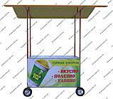 Тележка для уличной торговли ТТ1, фото 2