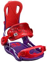 Крпления Volkl FASTEC VISION WMN / purple 2016