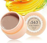 Гель-краска CANNI 5мл №563 грязно-желтая