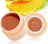 Гель-краска CANNI 5мл №570 оранжево-карамельная