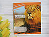 Тетрадь школьная в клеточку 18 листов Лидер, дикие животные, фото 5