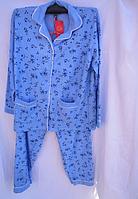 Женская пижама байка (р.52-60) 5 цветов