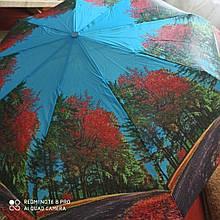 Жіночий парасольку автомат Calm Rain осінь а490/5