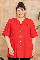 Рубашка женская летняя Рината р. 52-66, фото 1