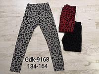 Лосины для девочек оптом, Glo-story, размеры 134-164, арт. GDK-9168