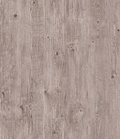 Ламинат Rezult Коростень, Ultra, Ультра, UL 300 Дуб Костадин, 32класс, толщина 8мм, 4-х сторонняя фаска