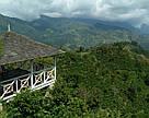 МИНИ Ямайка Блю Маунтин в конверте упаковка 15 шт / по 8г легендарный кофе Jamaica Blue Mountain, фото 9