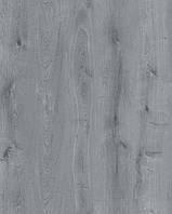 Ламинат Rezult Коростень, Ultra, Ультра, UL 305 Дуб деликатный, 32класс, толщина 8мм, 4-х сторонняя фаска
