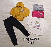 Костюмы для девочек оптом, размеры 4-12 лет, Seagull, арт. CSQ-52493