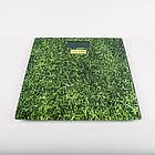 Весы напольные Maestro MR-1824, 150 кг., фото 6