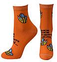 Жіночі демісезонні шкарпетки оптом, фото 2