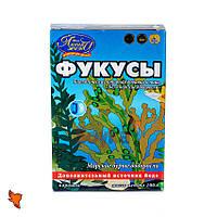 """Фукус """"Беломорская жемчужина®"""" водоросли сушеные пищевые, 100 г, коробочка"""