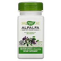 Natures Way, Молодая люцерна, 405 мг, 100 растительных капсул