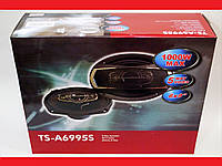 Pioneer TS-A6995S (600Вт)