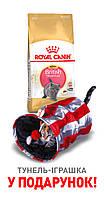 Royal Canin Kitten British Shorthair 2кг для котят британской короткошерстной