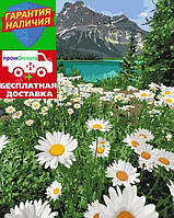 Картина по номерам Красота природы Краса природи 40*50см KHO2819 Раскраска по цифрам