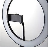 Кольцевая LED селфи лампа диаметр 26 см. + Штатив 2 метра Белый, фото 4