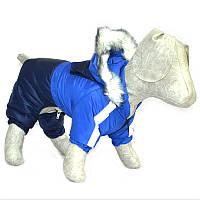 Комбинезон для собак Дуэт синий бэби 18х22, фото 1