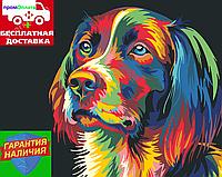 Картина по номерам Цветной пес Кольоровий пес (цветной холст) худ. Ваю Ромдони 40*50см Розпис по номерах