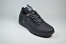 Чоловічі шкіряні кросівки чорні Splinter 1719