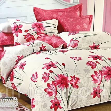"""""""нежное"""" постельное белье Elway Premium евро размер 200*220 см, ткань сатин 100% хлопок, фото 2"""