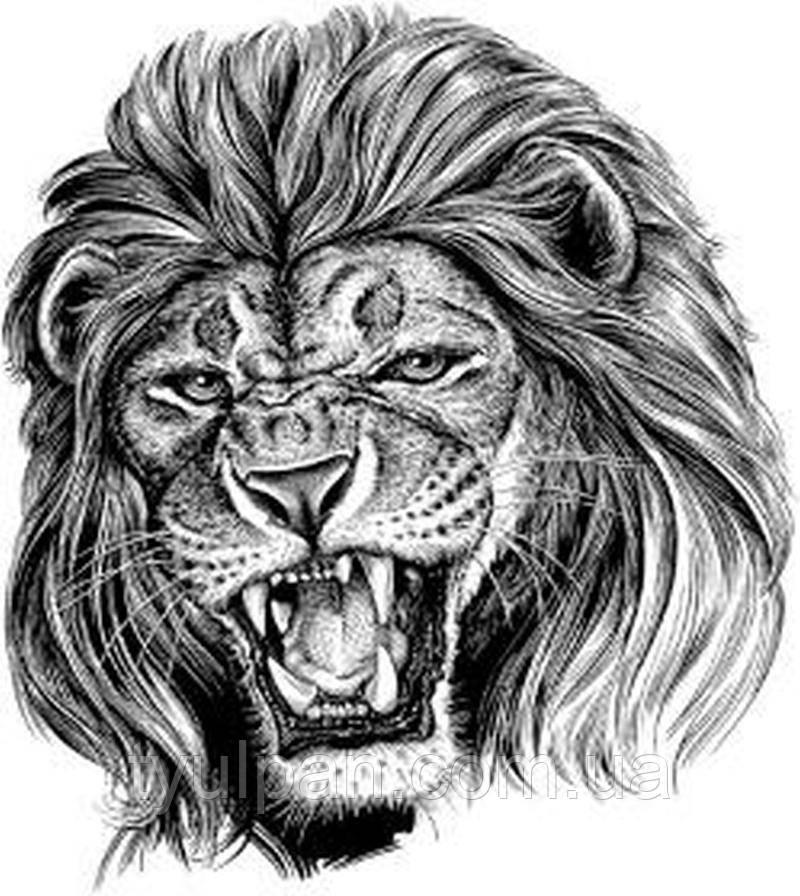 Вафельная картинка лев