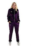 Женский спортивный велюровый костюм, с капюшоном, брюки без манжета, р. 50,52,54 фиолет (к4)