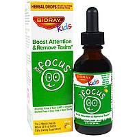 Bioray, NDF Focus, повышение внимания и удаление токсинов, для детей, с цитрусовым вкусом, 60 мл (2 жидких,,