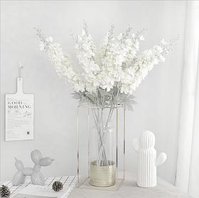 Цветы Дельфиниум  Айвори (60см)