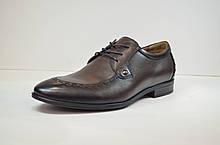 Чоловічі шкіряні туфлі коричневі Cevivo 4770