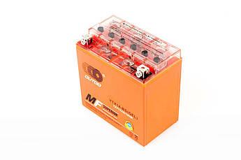 Мото аккумулятор АКБ (Аккумулятор на скутер, мотоцикл, мопед) 12V 12А AGM (151х51х100) (DB6-12) для электротехники TERRY (#AKY)